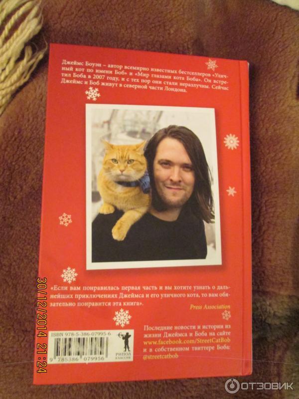 Сек рассказы с котом 11 фотография