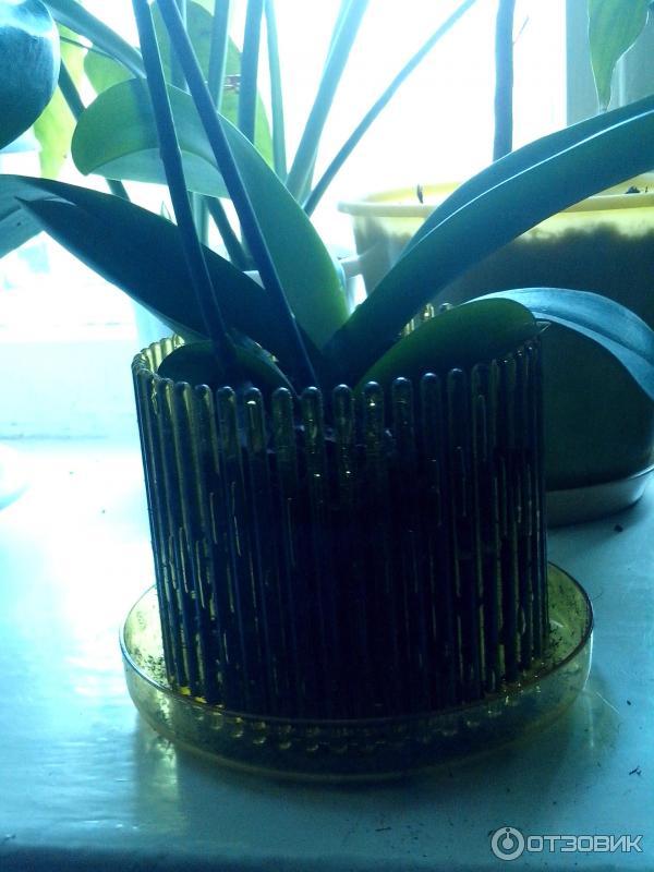 керамическое кашпо для орхидей лодка