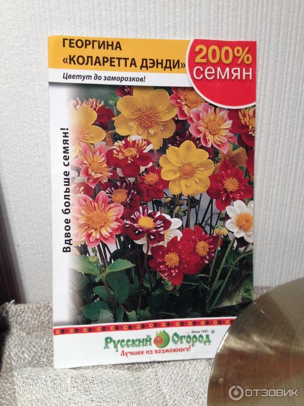 Русские по колено в сперме 22 фотография