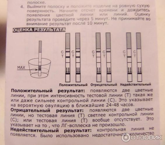 Тест На Овуляцию Инструкция Соло