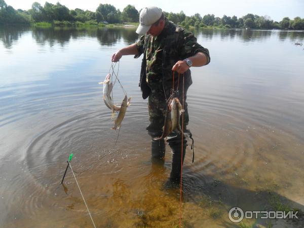 отдых и рыбалка на припяти