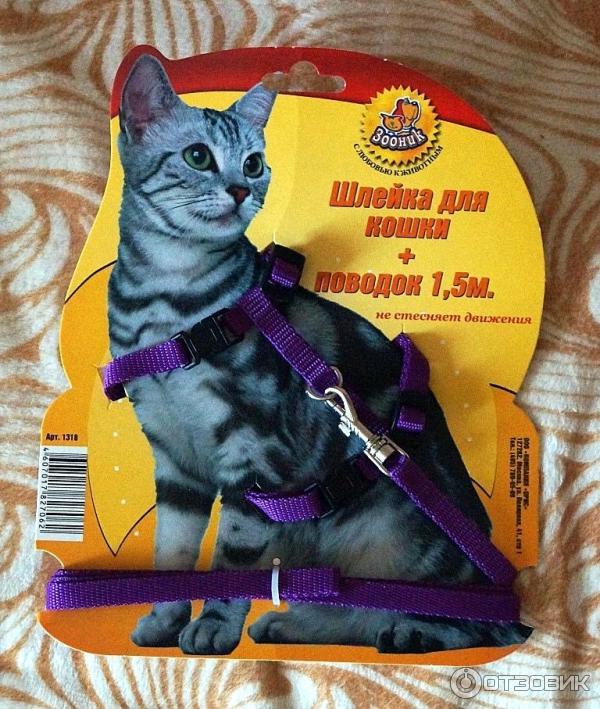 Шлейка кошка отзывы