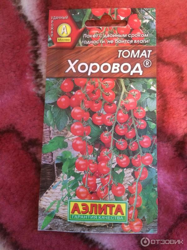 Как сажать томат хоровод 57