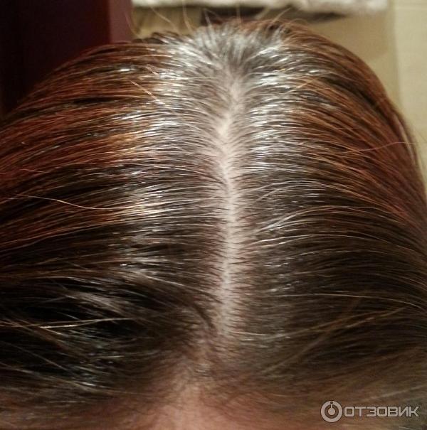 Хна для седых волос