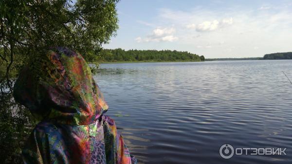 беларусь озера рыбалка витебская