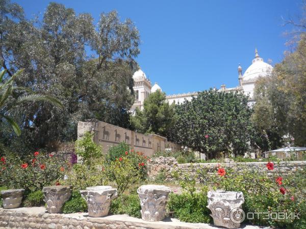 стоимость экскурсии в карфаген из монастира