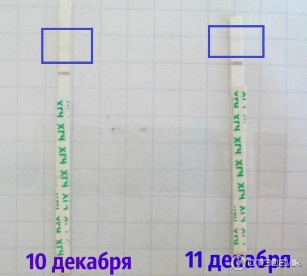 как показывает тест на беременность фото