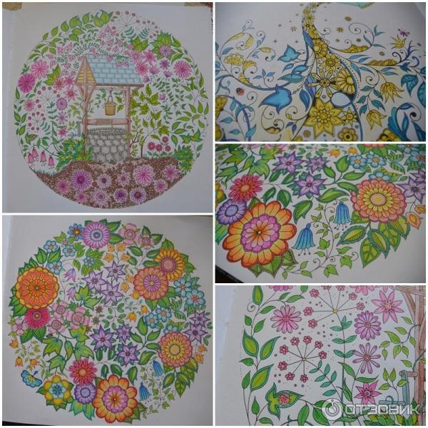 Раскраска антистресс волшебный сад в цвете