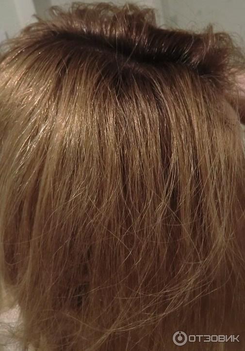 магазин волос в киеве недорого