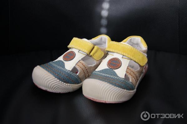 Предмет одежды дополняющий обувь