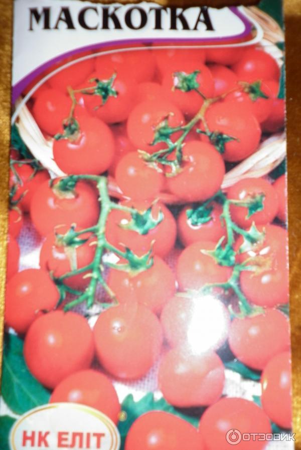"""Отзыв о семена томатов нк элит """"маскотка"""" для балконов быстр."""