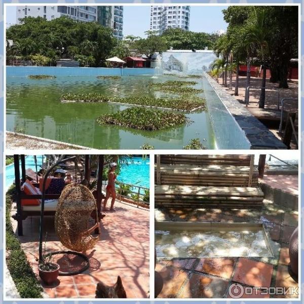 Нячанг вьетнам отели парк горького