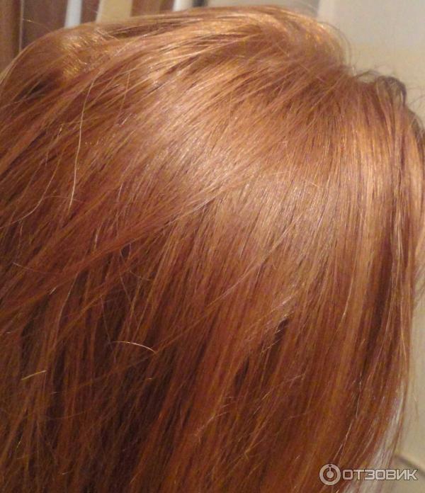 Цвет волос коричневый блондин