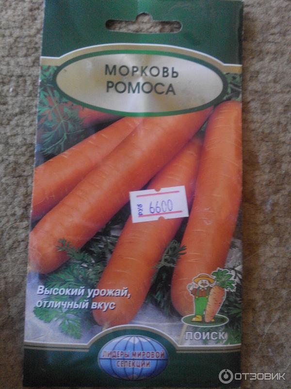 Морковь ромоса описание сорта фото