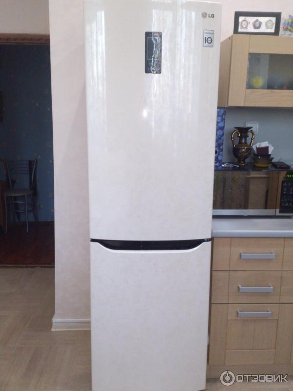 отзыв о холодильник Lg Ga B409 Seqa хороший холодильник