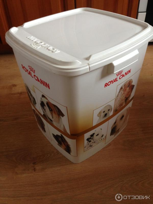 ROYAL CANIN сухой корм для кошек купить в Рязани