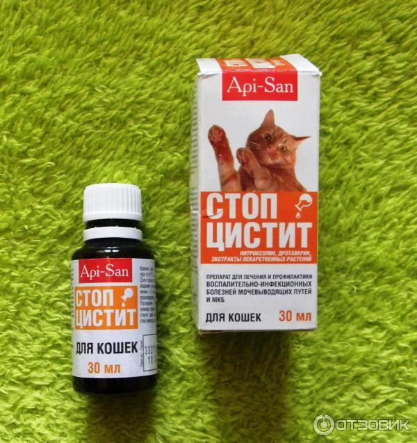 Нитроксолин для кота при цистите у