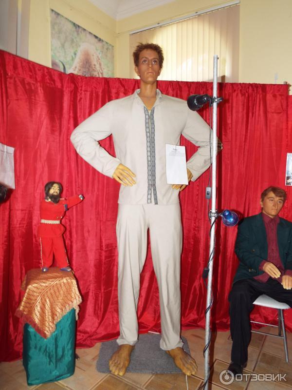 Выставка восковых
