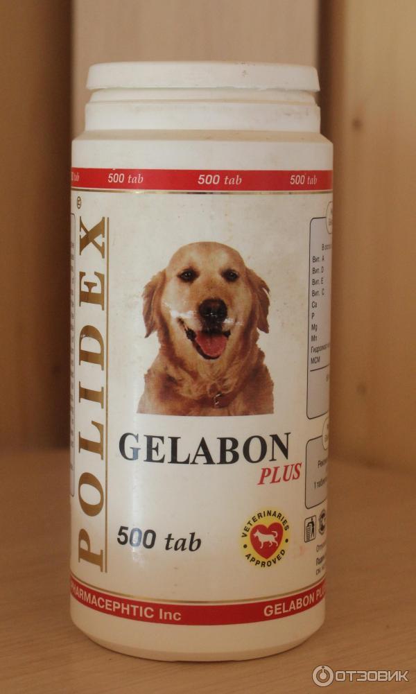 гелабон плюс для собак инструкция - фото 5
