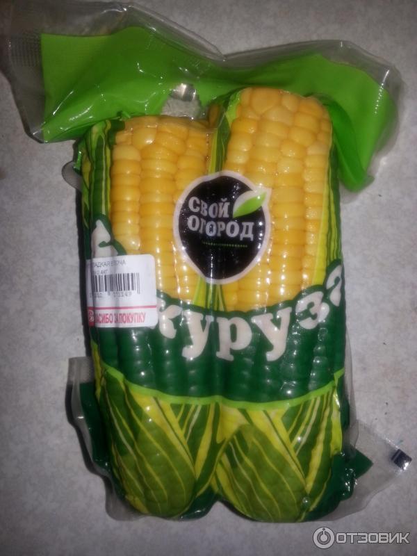 Кукуруза мой огород