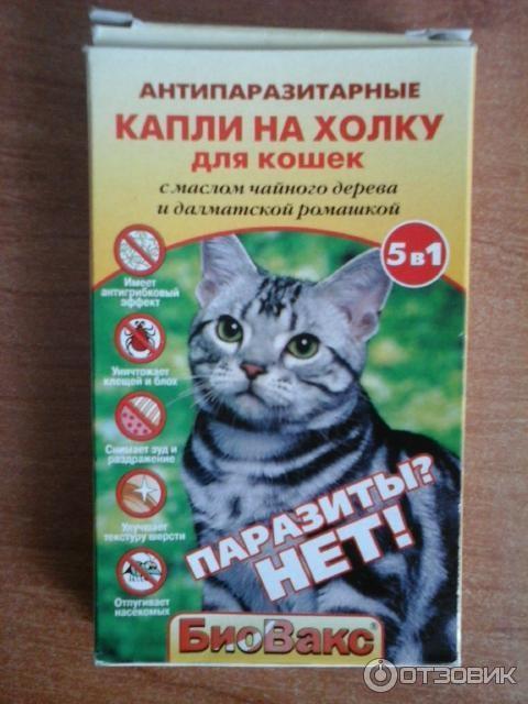 Биовакс капли для беременных кошек 84