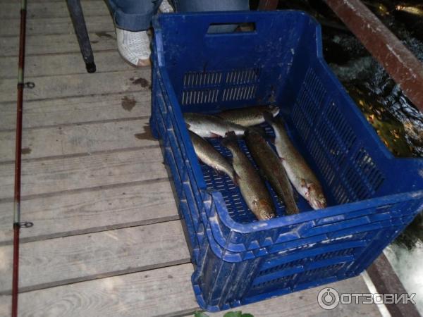 рыбалка в турции в улупинаре