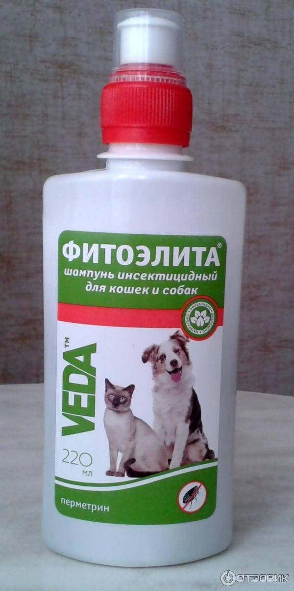 Средство от собак в домашних условиях