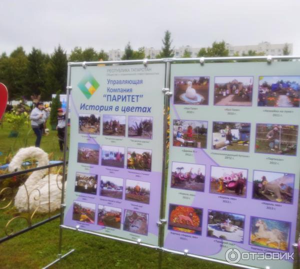 Выставки на праздниках