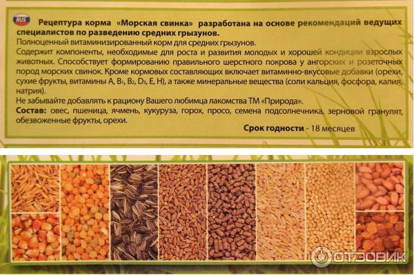 Корм для привередливых собак в Бердянске. Сравнить цены