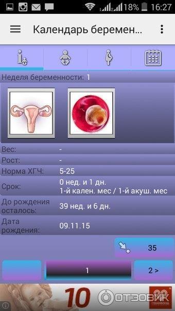 Календарь беременности майл ру
