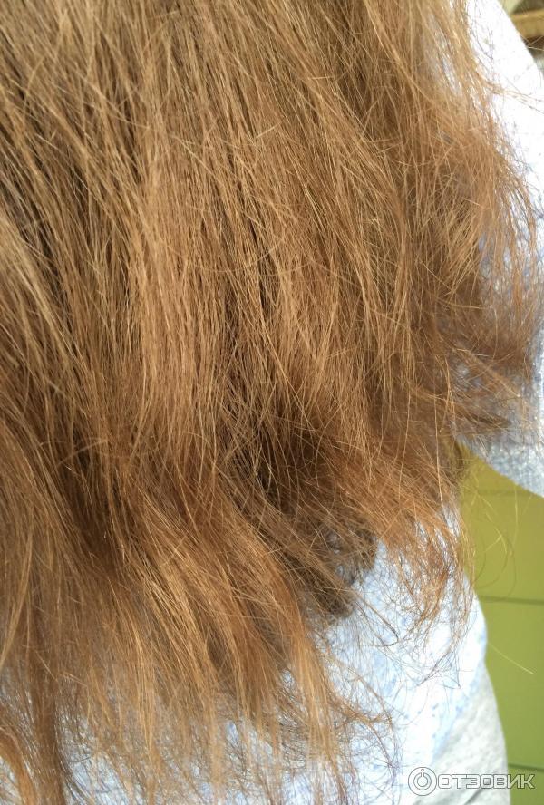 Волосы сухие как солома что делать в  864