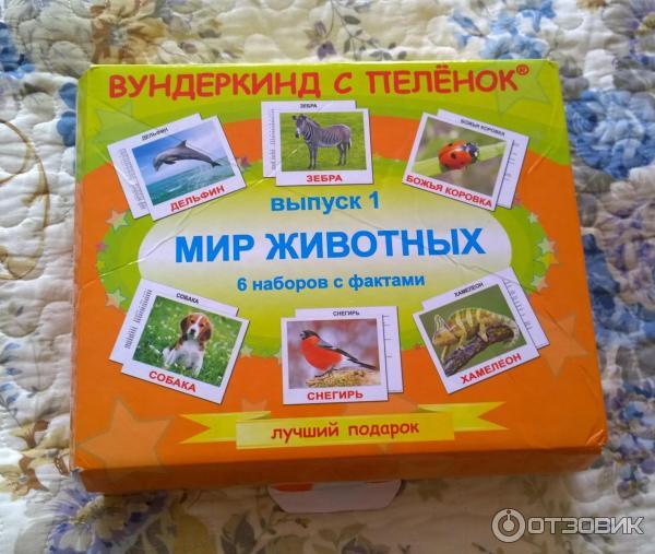 Чемодан Вундеркинд С Пеленок Купить В Москве
