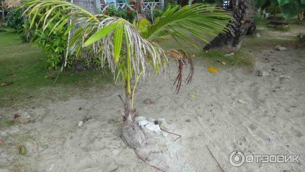 Какой пляж выбрать на ко чанге