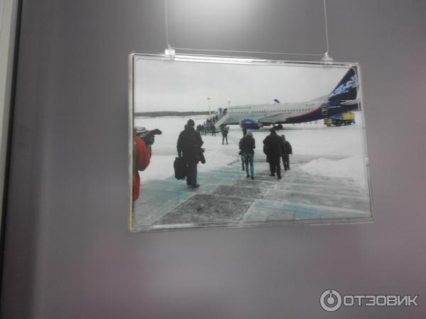 Купить авиабилет в киев из москвы