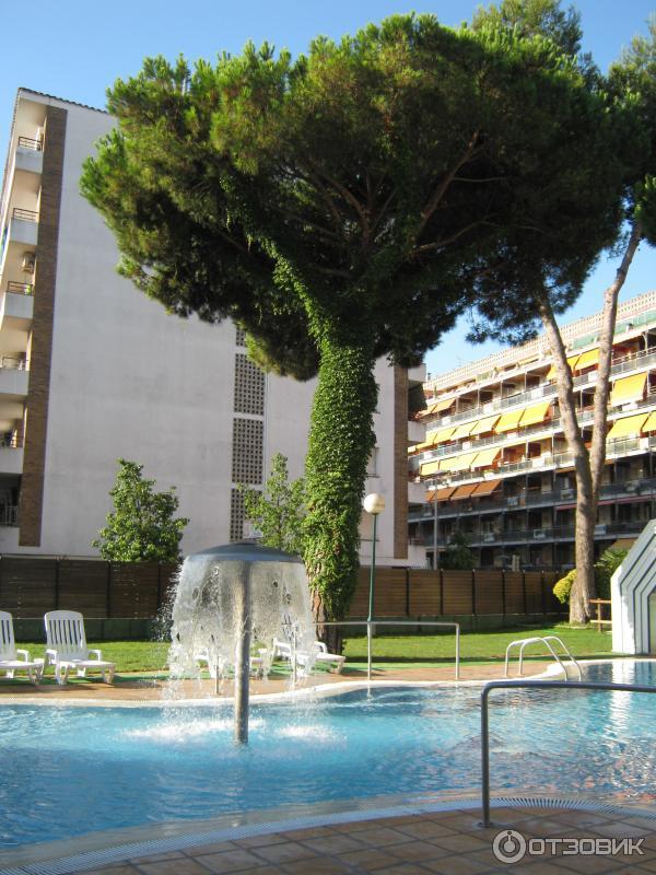 Оазис парк отель испания
