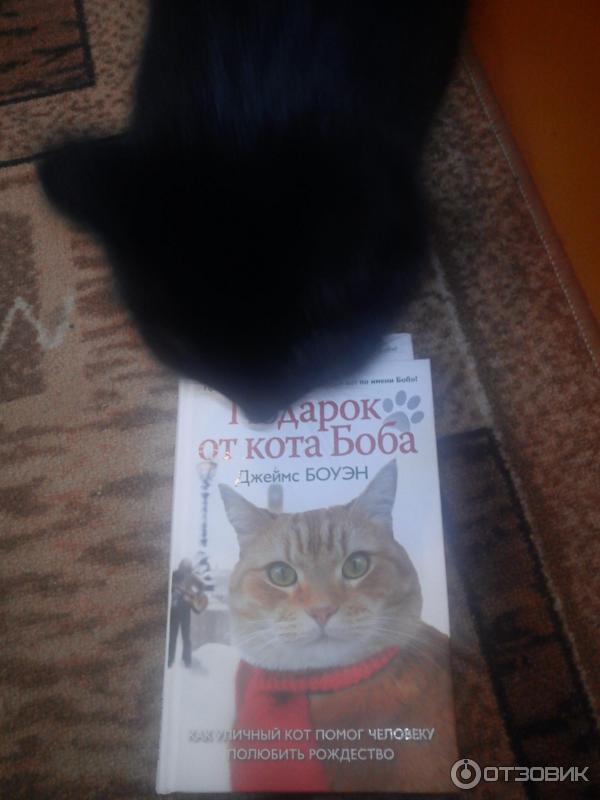 Джеймс боуэн подарок от кота боба как 421