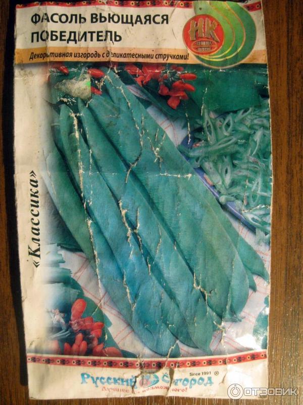 Фасоль модница выращивание 966