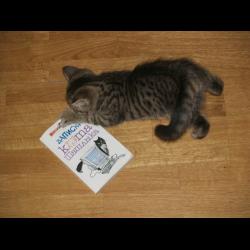 Экслер кот fb2
