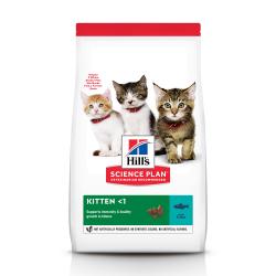 Сухие корма для котов хилс