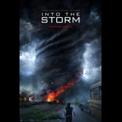 скачать навстречу шторму торрент - фото 10