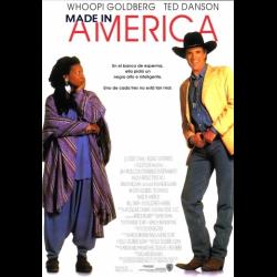 Сделано в америке фильм 1993