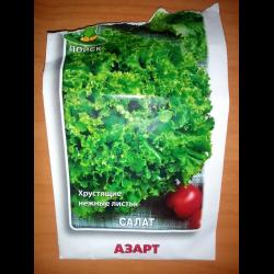 Салат азарт выращивание из семян 29