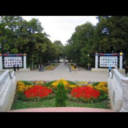 армавир краснодарского края природа и климат в фото