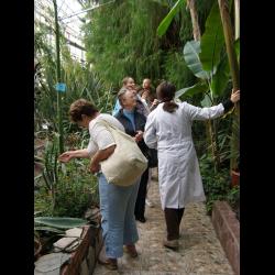 Отзывы о ботаническом саде