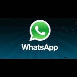 Whatsapp для андроид отзывы img-1