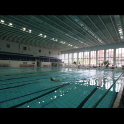 Где купить справку в бассейн в Москве Соколиная гора форум