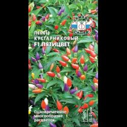 Перец пятицвет выращивание 86