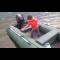 надувная лодка flinc 360kl
