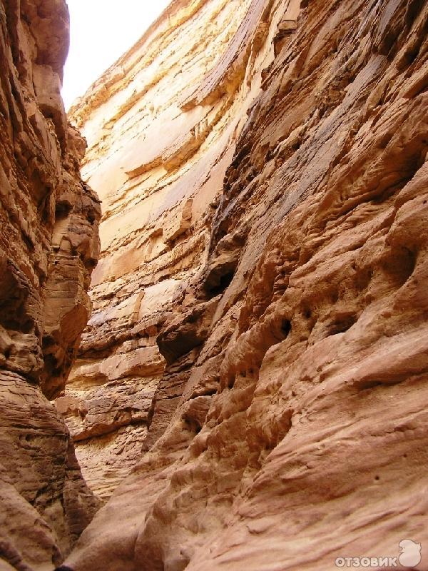 обходится шарм эль шейх фото туристов цветной каньон наряды прически