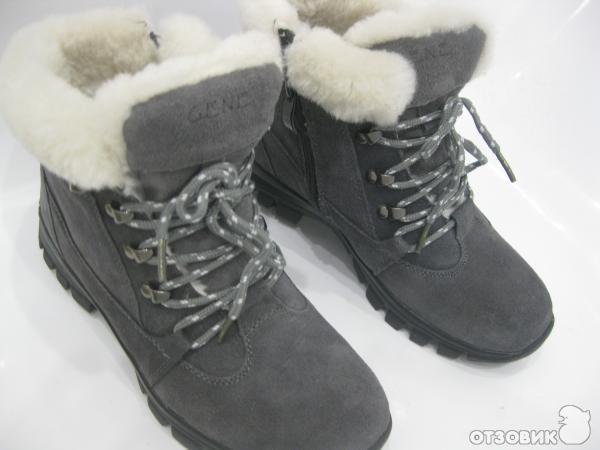 f6bd5e2164ad Отзыв о Ботинки женские зимние Covani Gene | Для зимнего бездорожья ...